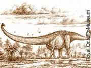 rom-dino-closet-sauropod1